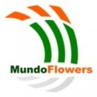 Mundo Flowers : RESPONSABLE STAND FLEURS ANGERS H/F
